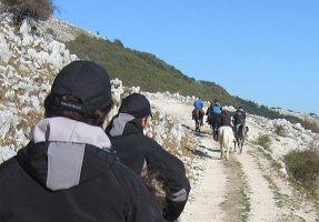 t_trekking2.png - 26.42 kb