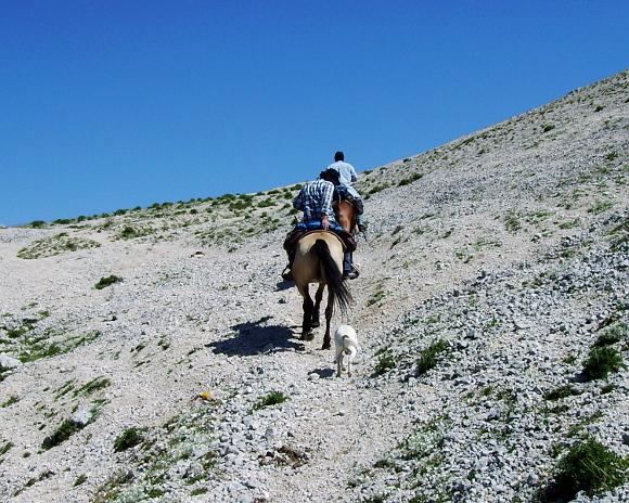 trekking-briganti-0.jpg - 194.18 kb