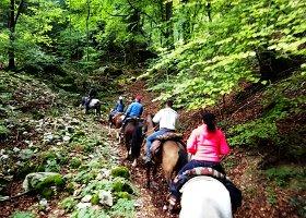 trekking-parco_00.jpg - 33.56 kb